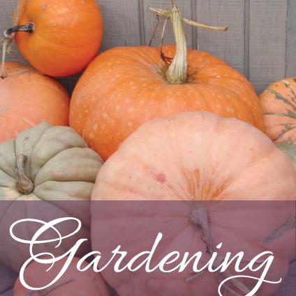 Gardening_5