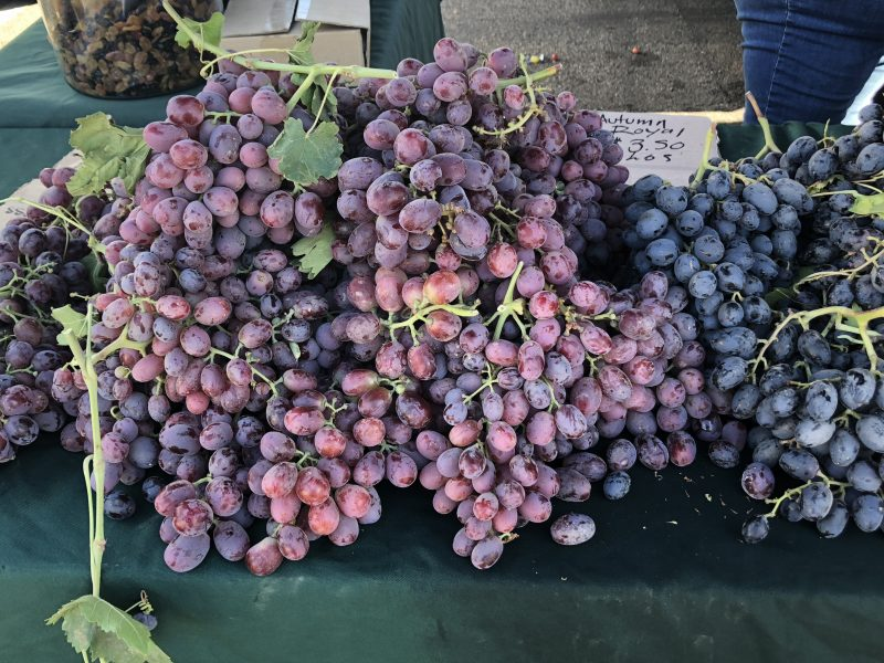 Beautiful grapes, Cambria Farmers Market