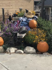 sleeping scarecrow