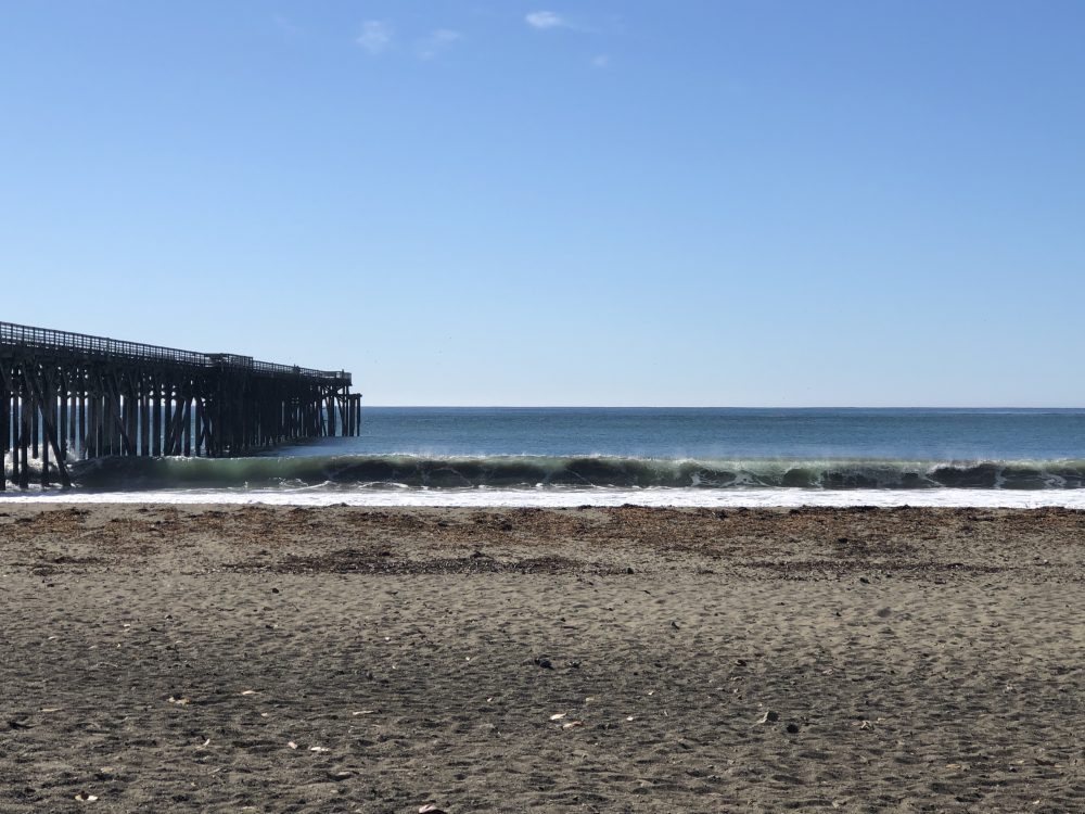 San Simeon Surf